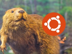 Ubuntu 18.04 LTS is called Bionic Beaver