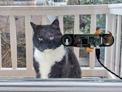 Dutch developer creates a facial recognition device for cats